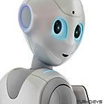 Boston Dynamics pepper